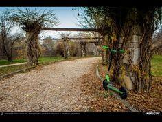 Cu trotineta prin Bucuresti: Parcul Herastrau si Calea Victoriei (montaj foto-video) - Bucharest By Kick Scooter: Herastrau Park And Victoriei Avenue - © 2007 - 2016 | KERUCOV .ro