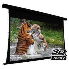 "EluneVision Reference Electric Projection Screen - 106"" #EV-T3-106-1.0"