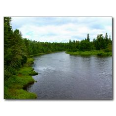 Big Black River Postcard (Pkg of 8) by KJacksonPhotography --  The meandering Big Black River flowing through the forest green of the North Maine Woods, Aroostook County near the Canadian Border. PC:163.191 #nature #maine #bigblackriver #landscape #river #postcard #postcards