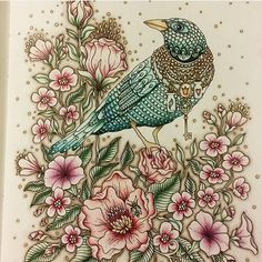 Lovely! By @ceiliscoloring
