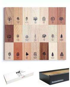 Naef Tree and Wood Identification Gift Box