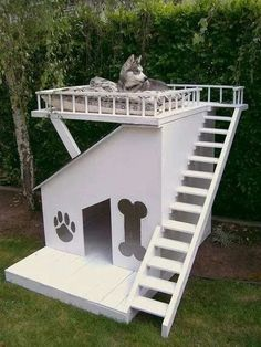 Comfy outside area for dogs