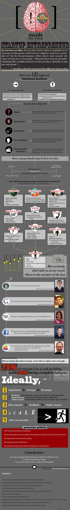 Inside the mind of a startup entrepreneur, startup infographic, startup tips