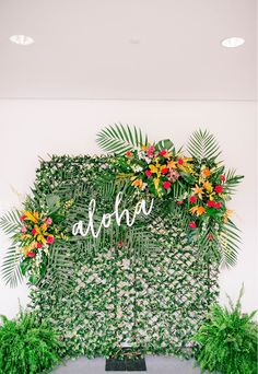 Aloha Wedding Photo Machine Tropical Wedding Ceremony Hawaiian Wedding C . - Aloha Wedding Photo Machine Tropical Wedding Ceremony Hawaiian Wedding C … – # - Aloha Party, Luau Theme Party, Hawaiian Luau Party, Hawaiian Birthday, Luau Birthday, Tiki Party, Hawaiin Party Ideas, Hawaiin Theme Party, Hawiian Party