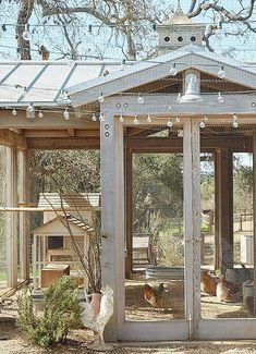 The chicken coop is framed in wood and walled with open mesh. Champagne grapevines climb one wall providing shade as well as a tasty treat for the chickens says Brooke. Chicken Shed, Chicken Garden, Backyard Chicken Coops, Chicken Coop Plans, Backyard Farming, Chickens Backyard, Farm Chicken, Chicken Houses, Small City Garden