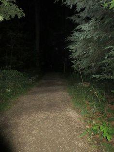 2013 ghost walk.Leolyn woods