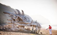 Massive Dragon Skull - HBO - Gme of Thrones