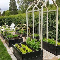 raised garden beds self watering Backyard Vegetable Gardens, Potager Garden, Veg Garden, Vegetable Garden Design, Outdoor Gardens, Balcony Gardening, Fence Garden, Garden Bar, Garden Sheds