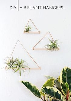 DIY Pretty Hanging Shelves - Home Decor ideas are pretty cheap when you DIY. I am glad that I could find these DIY Home Decor Ideas and pinning for future reference. Every girl should know these Home Decor DIY ideas. Deco Floral, Arte Floral, Diy Planters, Hanging Planters, Planter Pots, Hanging Air Plants Diy, Indoor Plant Hangers, Hanging Gardens, Planter Ideas
