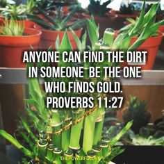 Anyone can find the dirt in someone  be the one who finds gold.  Proverbs 11:27 #quotesoftheday #quotes #quote #bible #biblequotes #bibleverse #tbt #l4l #instagood #instagram #water #love #positive #positivevibes #positivethinking #heart #jesus #best #motivasi #motivationalquotes #motivation #inspiration #inspiring #inspirasi #inspirationalquotes  #bestoftheday #photooftheday  #pinterest #IFTTT #IFTTT