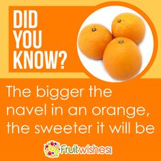 Knowledge Is Power, Did You Know, Cantaloupe, Orange, Fruit, Sweet, Food, Scientia Potentia Est, Essen