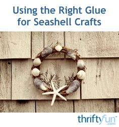 This is a guide about using the right glue for seashell crafts. Certain types of glue work best when working on projects involving gluing shells to other objects.
