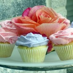 Mini vanilla cupcakes with buttercream roses piped on top - it would be easy to make these with my mini cupcake maker!