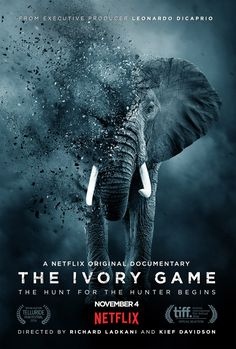 EVERYONE should watch this!   Cried a lot. They could not have picked a better photograph for the cover.  Very well done.   Kief Davidson and Richard Ladkani's The Ivory Game (2016)