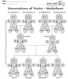 Genetics for Kids Mini-Lecture and Punnett's Square