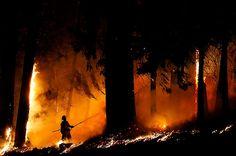 Un incendio forestal fuera de control en Fresh Pond, norte de California, amenaza a 2.000 hogares tras consumir enormes extensiones de bosque maderero en el este de Sacramento.