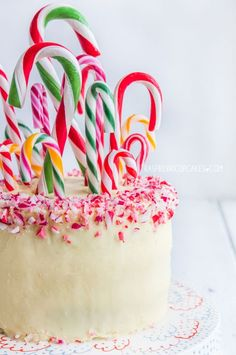 Before serving, pass out candy canes to little ones so they can help decorate this cake. Bonus: Once you cut in, guests will be impressed by the beautiful red and white marbling inside. Get the recipe at Raspberri Cupcakes. - CountryLiving.com