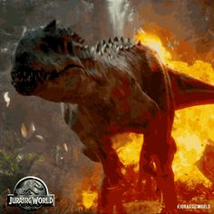 Jurassic World – In Theaters June 12 Jurassic World Raptors, Jurassic Movies, Jurassic Park 1993, Jurassic World Dinosaurs, Jurassic Park World, Dinosaur Wallpaper, Cute Pokemon Wallpaper, Ocean Wallpaper, Dinosaur Images