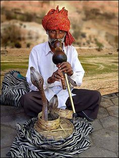 Witness a traditional Snake charming (Rajasthan, India)