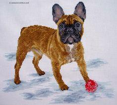 "Scheme ""French Bulldog"" | cross-stitch from the studio ""Kosh"""