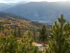 Looking South over Skaha Lake
