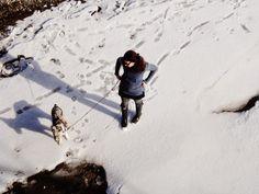 バンフのうわさ: 冬のバンフWINTER WONDERLAND