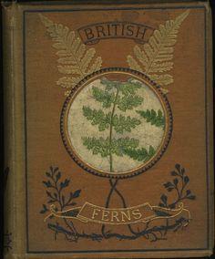 British Ferns, a Popular History