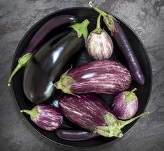 Everything you need to know about Eggplant. Eggplant is enjoyed across many cultures and can be added to a Thai or Indian curry, an Italian-inspired eggplant Parmesan, or roasted to make a grilled veggie pasta or sandwich. Pan Fried Eggplant, Grilled Eggplant, Eggplant Parmesan, Fruit And Veg, Fruits And Veggies, Eggplant Benefits, Vegetables Garden, Juicing, Grilling