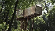 Les cabanes dans les arbres les plus originales