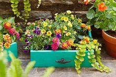 3. Creative Planters: Old Dresser Drawer
