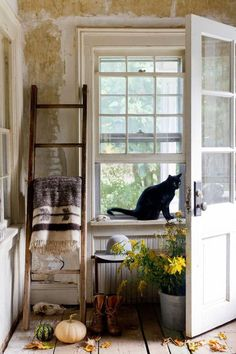 Witchy Home Decoration - Fill your house with things you adore. The best thing about it's that there isn't any incorrect approach to design your house if it reflects precisely. by Joey Vibeke Design, Cat Window, Window Art, Farm Life, Farm House, Ivy House, Country Living, Country Entryway, Rustic Entry