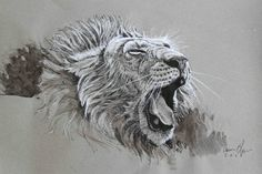 Animal Art Gallery - Aaron Blaise Art For Sale Animal Sketches, Animal Drawings, Art Drawings, Lion Painting, Animal Graphic, Lion Art, Wildlife Art, Illustrations And Posters, Animal Paintings