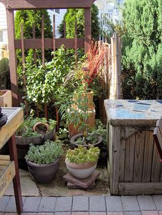 Veggies and herbs thrive in pots on this deck. Easy to maintain, this close-at-hand kitchen garden also provides screening. Posted by smp71lover