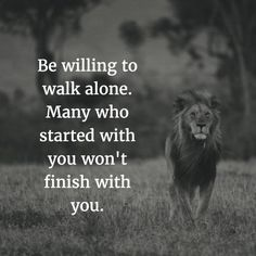 Image result for don't be afraid of being outnumbered. a lion walks alone while the sheep flock together #Dailywisequotes