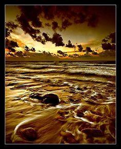 """A l'échelle cosmique, l'eau est plus rare que l'or.""""      Hubert Reeves"""
