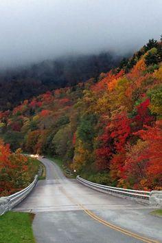 Blue Ridge Parkway + 15 Best Weekend Trips from Atlanta GA (photo: BlueRidgeKitties) // localadventurer.com