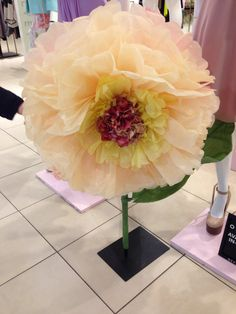 Large tissue paper flowers. These would go well with tissue paper Pom Poms.