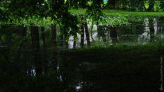 Majowo podwodnie... (01) Park A.Struga