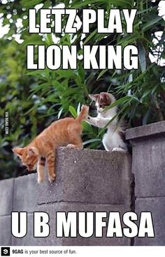 Let's play lion king, its so wrong yet so funny