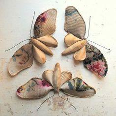 tapestry moths