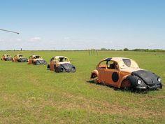 Running N Ranch ~ Roadside Art  Ladybug Beetles ~ Near Saint Jo, TX