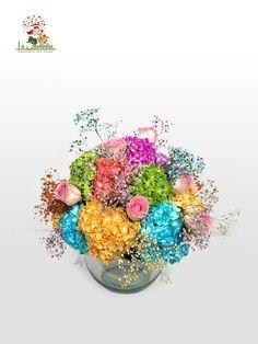 Cali, Window Boxes, Flowers