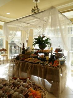 Safari Baby Shower food station  OH MY!!  Talk about over the top!!  But I do happen to have the canopy to pull this off!!