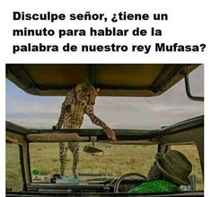 ##larisasana