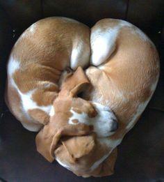 One heart....