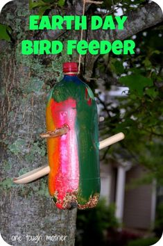 Earth Day Craft for Kids: Earth Day Bird Feeder using recycled bottle!!
