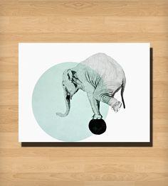 Elephant Print | Art Prints | Morgan Kendall Art | Scoutmob Shoppe | Product Detail