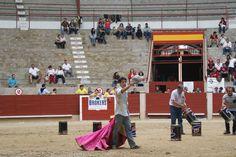Xuntanza de peñas taurinas de Pontevedra 2014 Basketball Court, Wrestling, Sports, Lucha Libre, Hs Sports, Sport