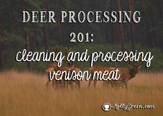 Learn how to process deer. This article covers how to cut up a deer and clean deer meat preparing it for wrapping and putting in your freezer. Venison steaks, roasts and meat for stew are just some of the cuts. Remember to remove the membrane. Venison Deer, Venison Steak, Deer Meat, Canned Venison, Deer Butchering, Venison Sausage Recipes, Deer Processing, Roast Chicken And Gravy, Roast Beef