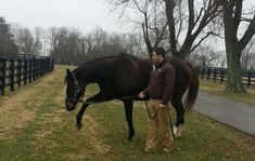Visiting Zenyatta - Horse Racing Nation